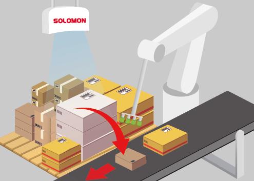 SOLOMON 3D - DEPALLETIZING