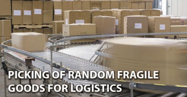 Picking of complex randomly Fragile Goods for Logistics