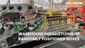 SOLOMON 3D - WAREHOUSE DEPALLETIZING OF RANDOMLY POSITIONED BOXES