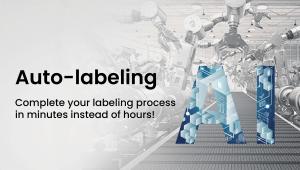 Solomon 3D - Auto Labeling